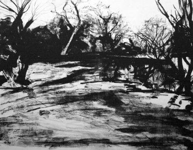 Long Pond February