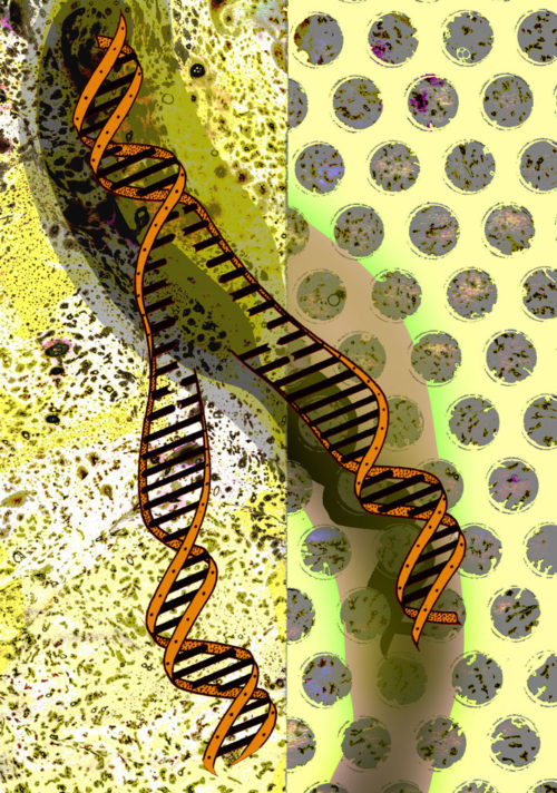 Franklin Crick Watson Wilkins DNA Ribbon 1