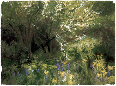 May Woodland