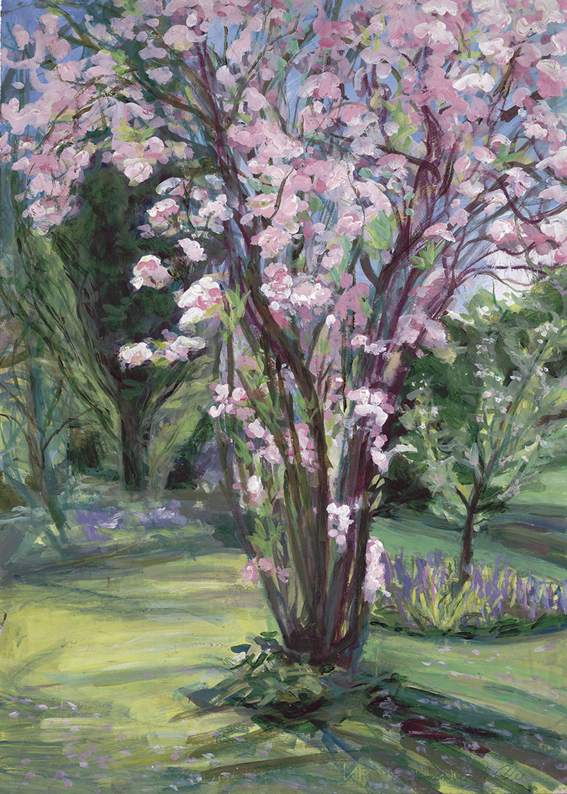 Flowering Cherry painting on paper