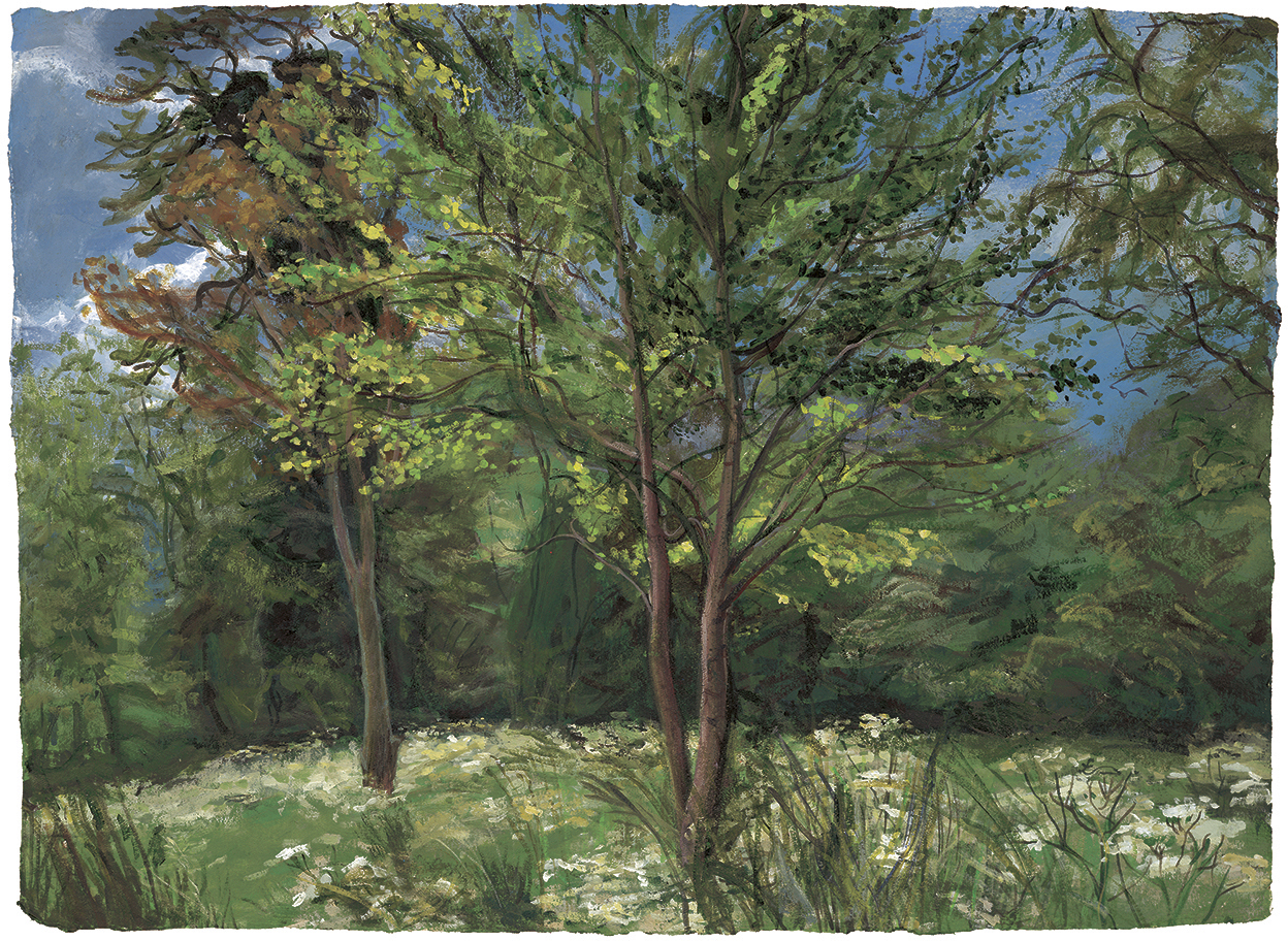 Painting by Denise Wyllie at Myddelton House Gardens' The Alpine Meadow
