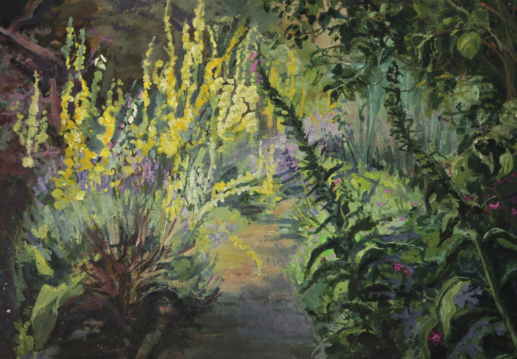 Pathway overgrown with Verbascum, lavender and foxgloves