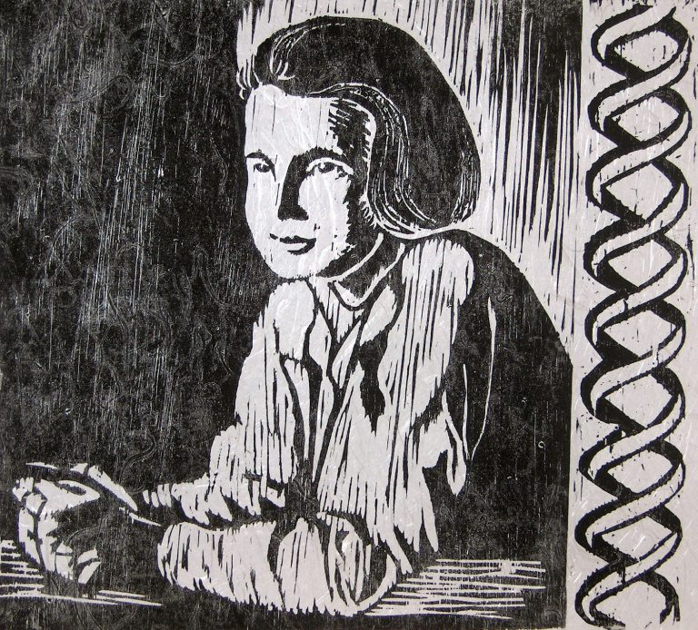 rosalind elsie franklin Franklin moved to j d bernal's lab at birkbeck college, where she did very fruitful work on the tobacco mosaic virus she also began work on the polio virus in the summer of 1956, rosalind franklin became ill with cancer.