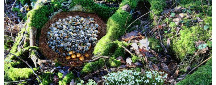 An Easter nest in a tree, surruonded by moss